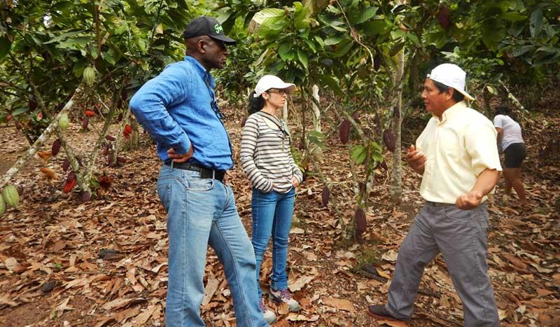 Karina Santana d'ECOTIERRA s'entretient avec des cultivateurs d'une coopérative au Pérou dans le cadre d'un projet de gestion durable des sols, financé par le Fonds Canopy dans lequel Fondaction et Mirova agissent comme partenaires.