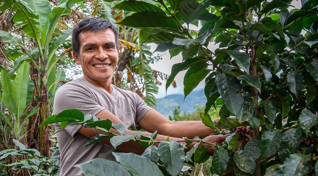 Producteur de la coopérative Selva Andina